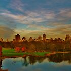 Central Park Perfection by Mistral Hill  Photography