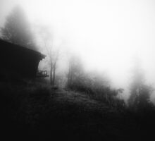 Cabin on a foggy morning by va103