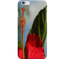 Close Up of Red Hibiscus Stamen and Pollen iPhone Case/Skin