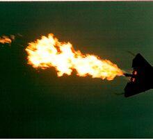f111 jet  by Richard  Willett