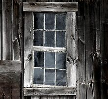 Window to the Past by Jason Lee Jodoin