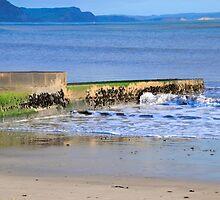 At the Beach, Lyme Dorset UK - 2014-12-19 by lynn carter