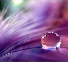 Pink bubble.... by Mary Trebilco