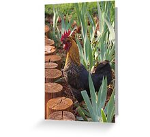 The one that rules the roost Greeting Card