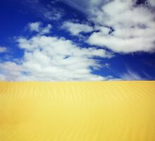 Dune by wellman