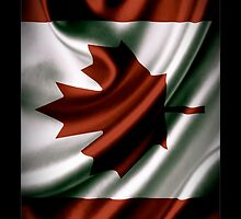 Canadian Colors iPhone / Samsung Case by Tucoshoppe