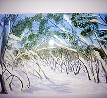 Snow on the Bluff spur trail  at Mt  Stirling by taariqhassan