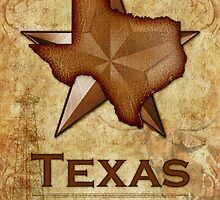Texas - The Lone Star State by Susan Sowers
