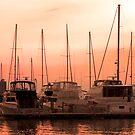 Sunset Marina by Jhug