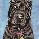 'Tia' - Shar-Pei by Michelle Wrighton