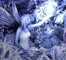 Faerie and orb by David Knight