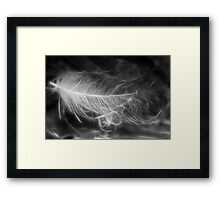 Floating Feather Dreams Framed Print