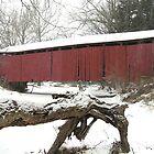 Wagoner's Bridge by James Wheeler