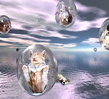 Raining Cats and Dogs by jewelskings