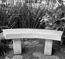 Stone Stool, Chinese Garden, Sydney by Dave Cheney