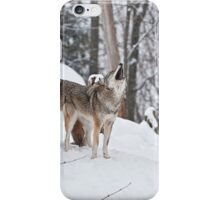 The Three Tenors iPhone Case/Skin