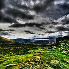 Mountain View by john0