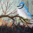 Bluejay by Jack G Brauer