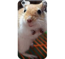 Gerbil 7 iPhone Case/Skin