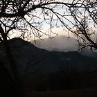A Peek at the Peak....Colorado Springs by dfrahm