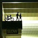 Slow by Matthew Stewart