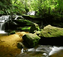 Leura Cascades by Jennifer and Paul Cave