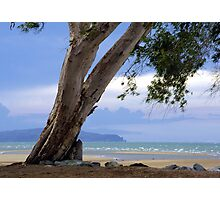 Shoal Point - Mackay Photographic Print