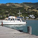 Akaroa pier by Mike Warman