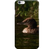 Common Loon Baby iPhone Case/Skin