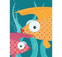 Ornate tropical fish Photographic Print