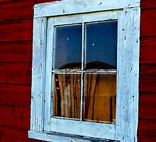 History Reflects by Halden