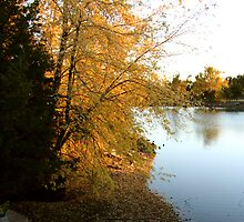 Lake shore in autumn by AndrewBlake