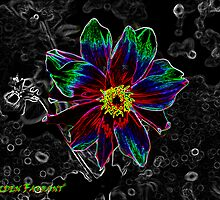 Tye Dye Pen Flower by Halden