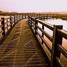 Boardwalk In Sepia by Ian Foss