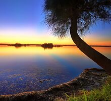 Sunbeams reflected in the water at sunset  seascape by Leah-Anne Thompson