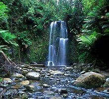 Beauchamp Falls by John Barratt