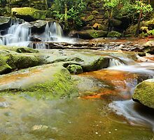 Tranquility waterfalls and moss covered rocks by Leah-Anne Thompson