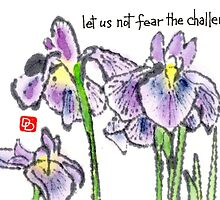 The Japanese Iris by dosankodebbie