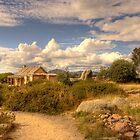 Craigs Hut 1 by trevorb