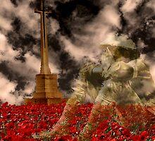 Fallen Hero by Ian Foss
