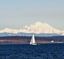 Sailing Past Mount Baker by Lynn Bawden