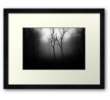 OLD SOULS Framed Print