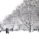 Winter B&W by HELUA