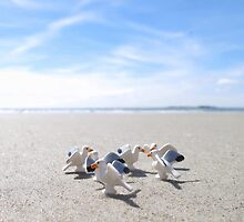 Meanwhile, on a nearby beach, birds. by bricksailboat