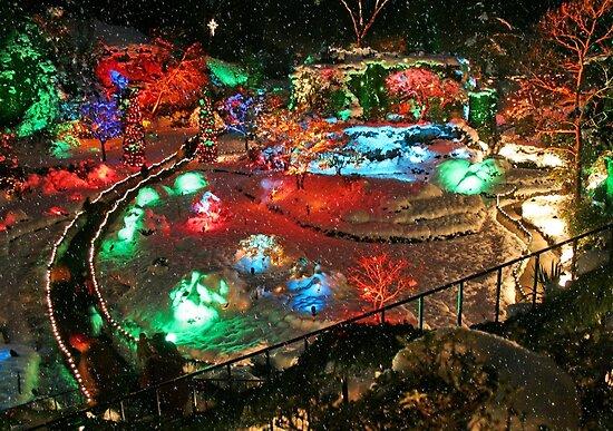 Christmas Lights in Butchart Gardens ..... by AnnDixon