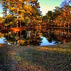 Lake at Brookgreen Gardens by imagetj