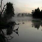 rising fog by Martin  Hoffmann