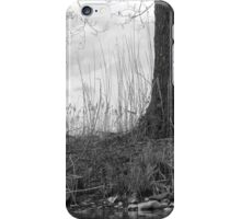Swan Under Cover iPhone Case/Skin