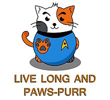 LIVE LONG AND PAWS-PURR Photographic Print