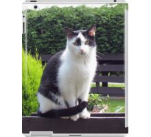 The Fence Sitter - Cat and Rose iPad Case/Skin